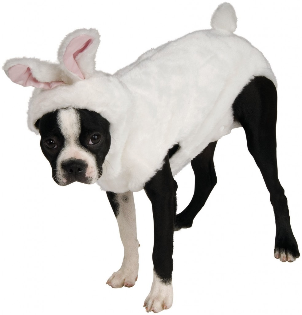 800969 983x1024 Easter Costumes For Adults and Kids