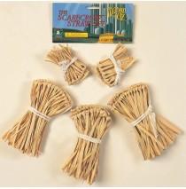The Wizard of Oz - Scarecrow Straw Accessory Kit - One Size