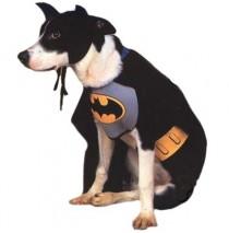 Batman Dog Costume - Large