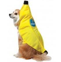 Chiquita Banana Pet Costume - X-Small