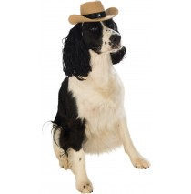 Cowboy Pet Hat Brown - One Size Fits Most