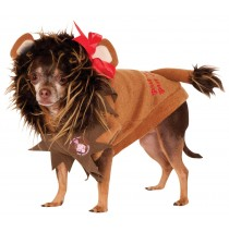 Wizard Of Oz - Cowardly Lion Pet Costume - Small