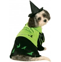 Wizard Of Oz - Wicked Witch Of The West Witch Pet Costume - Small