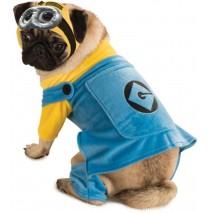 Despicable Me Pet Costume - Medium
