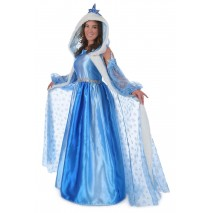 Adult Icelyn Winter Princess Costume - Small (4-6)