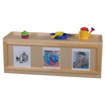 Mainstream Rectangular Primary Care Cabinet w/Picture Window on Back and Cruising Rail, 48''w x 15''d x 18''h