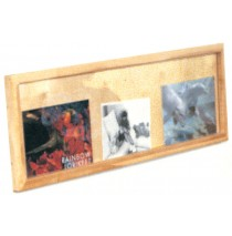 Deluxe Picture Display Window, 48''w
